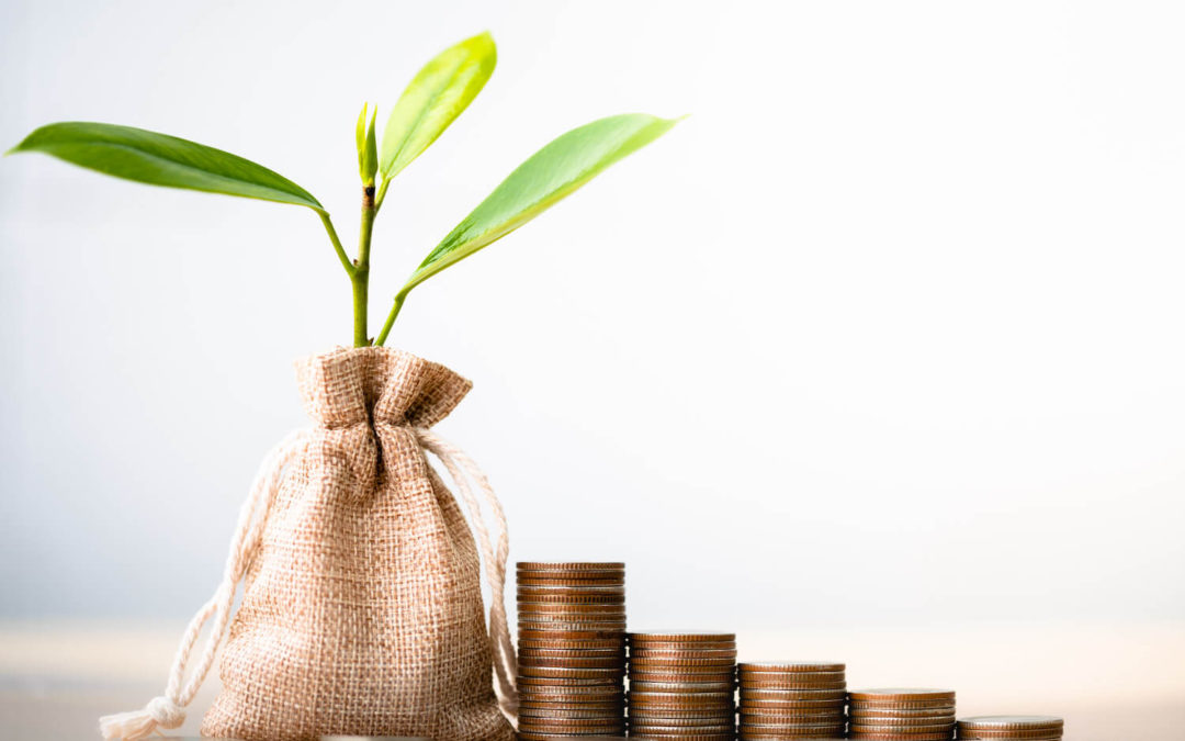 Small Cap Stocks and Microcap Stocks: Why Make an Investment?
